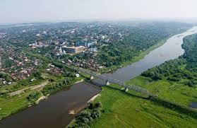 Сайт услуг в Новошешминске