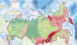 Сайт услуг в Новоселово